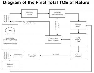 Total-TOE-D2
